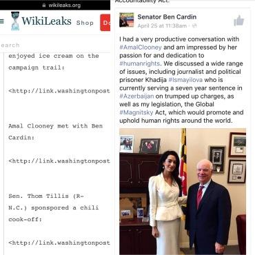 Amal Cardin Wikileaks